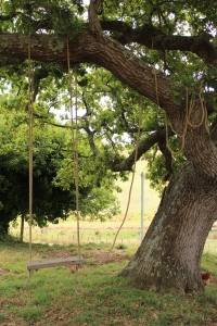 We made a swing (11)